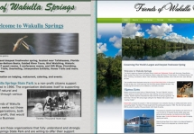 Friends of Wakulla Springs