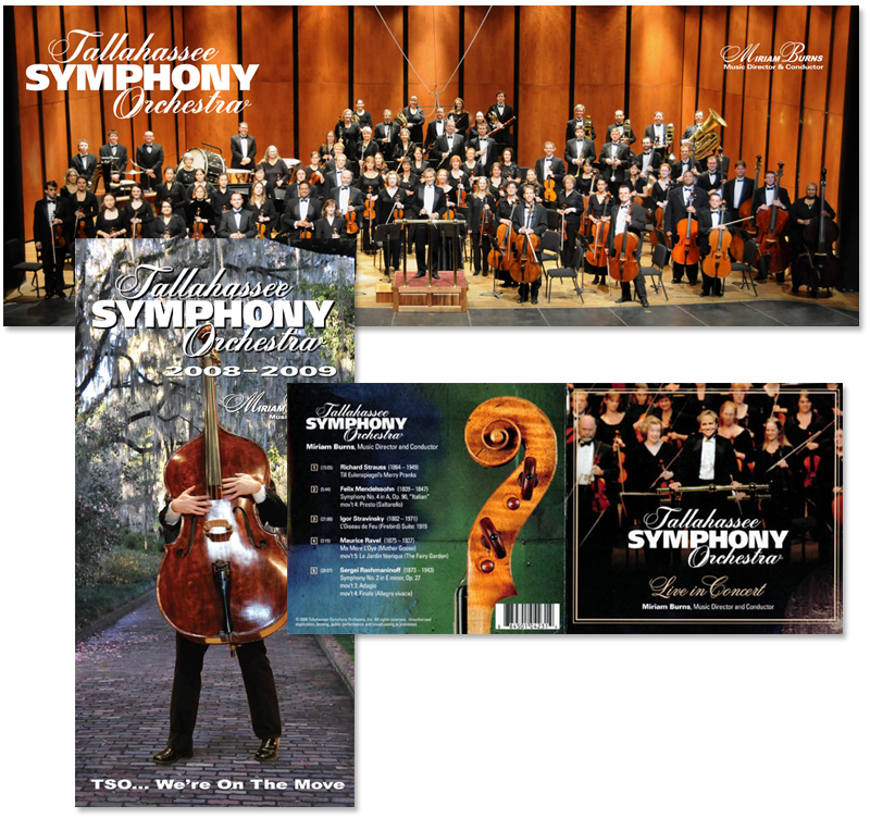 Tallahassee Symphony marketing materials